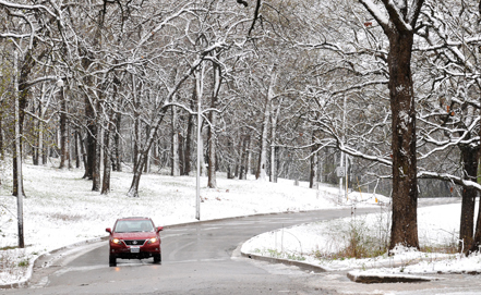В африке выпал снег жители умирают от
